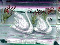 swans in perspex